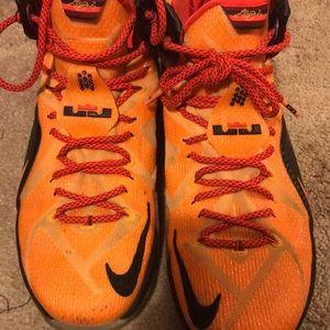 """Lebron James 12 """"Witness"""" Signature Nike's Size 11"""